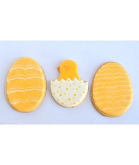 pulcino uovo